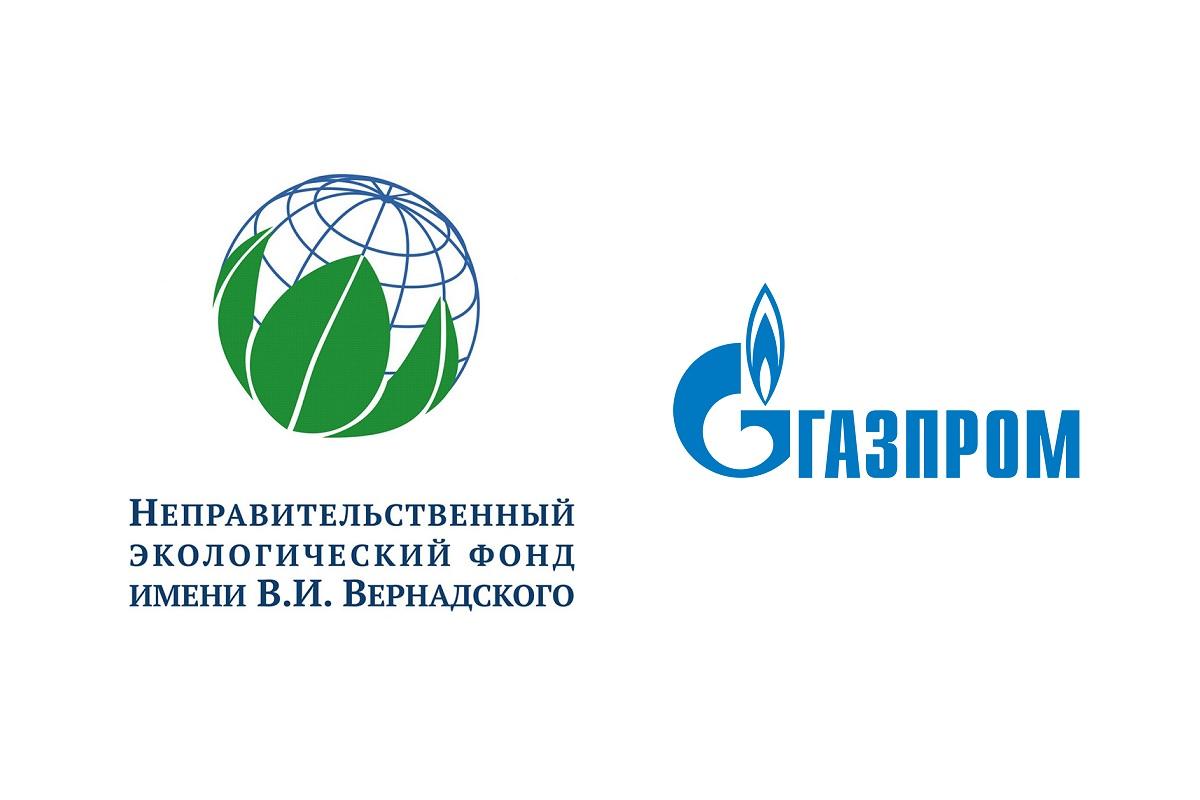 Конкурс проектов молодых ученых/студентов в области устойчивого развития газовой промышленности 2021 года