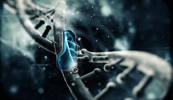 XXVI Всероссийская конференция молодых учёных с международным участием «Актуальные проблемы биомедицины – 2020»