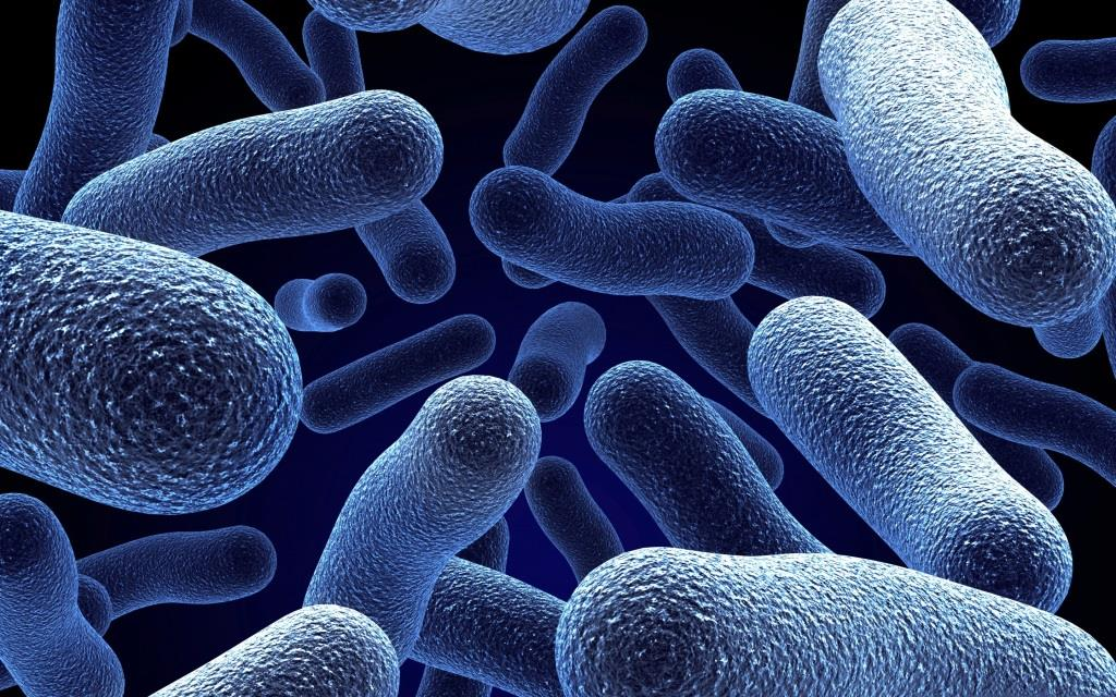 Всероссийская научно-практическую конференция «Актуальные вопросы научного обеспечения противоэпидемической защиты населения»