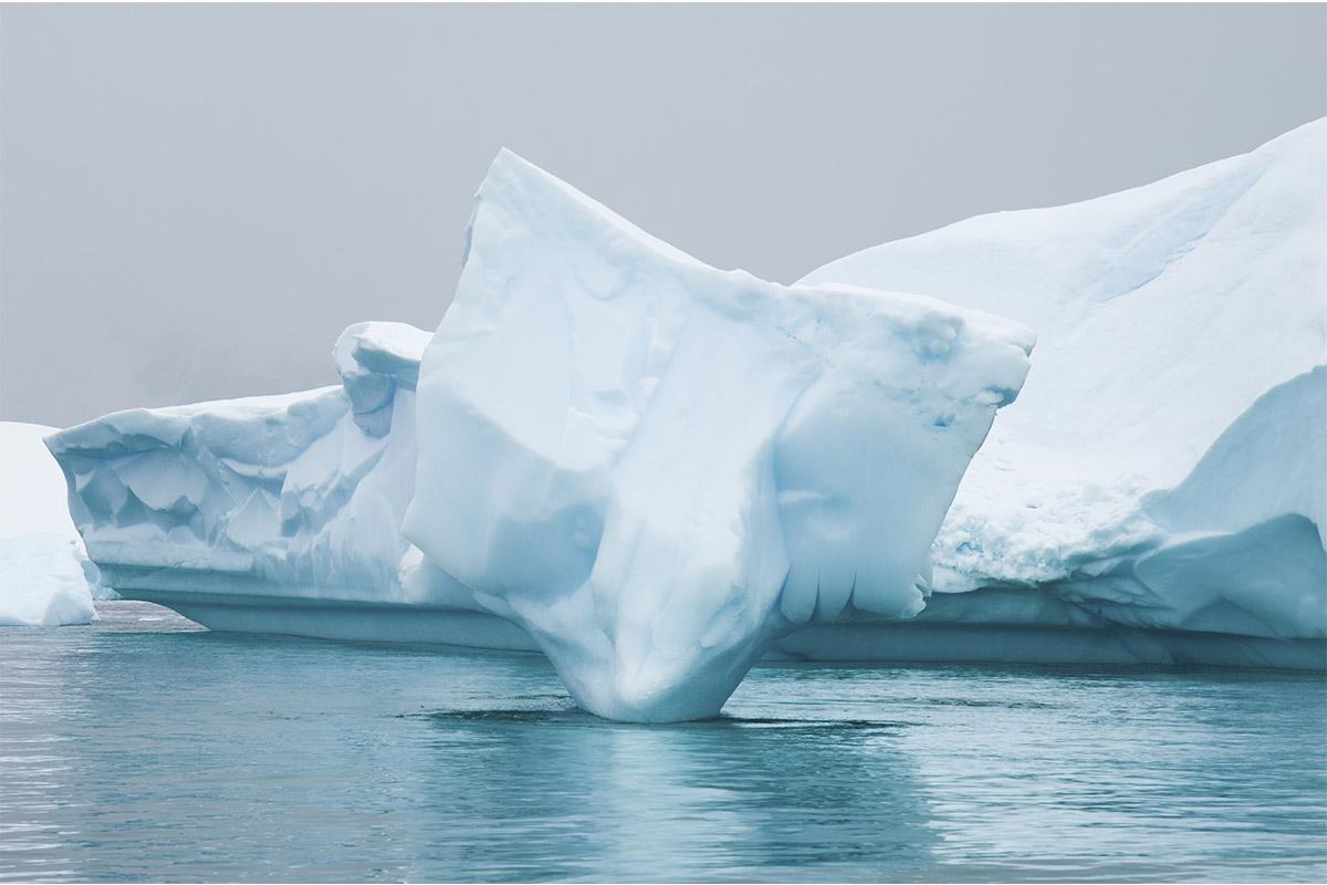 International Seminar on Arctic Materials took place at Polytechnic University