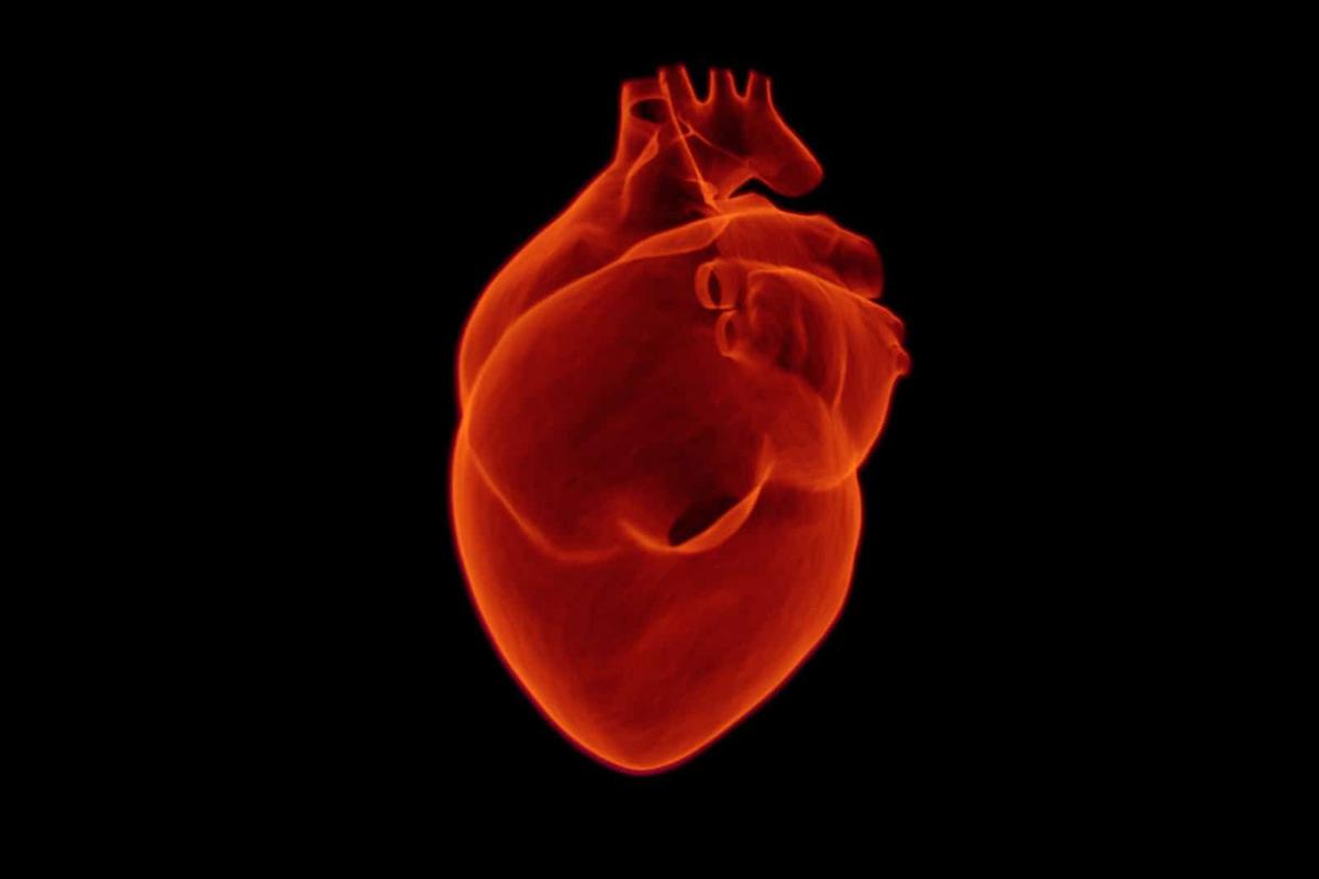 Ученые Политеха улучшили качество снимков сердца в 17 раз